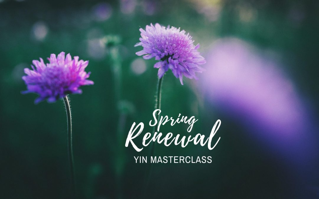 Purple spring flowers with Spring Renewal Yin Masterclass wording